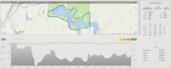 I missed the first part of the run with my Garmin, as I was screwing around trying to get my race belt on...